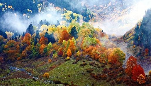 Фото Архыза – осенью он прекрасен.