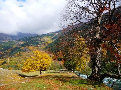 Фото Архыза – осенью он прекрасен